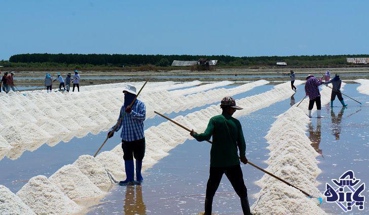 صادرات سنگ نمک به ارمنستان